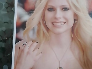 Ecuador Tribute 4 Avril Lavigne n.40