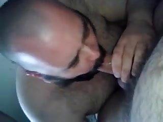 Big bear blow job